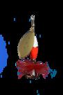 Wipp Spinn.  7 g Guld HOT